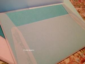 Transparent vellum envelopes
